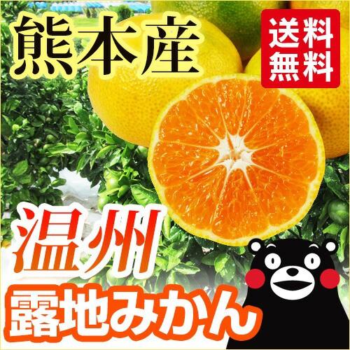 【 送料無料 】熊本産 温州 露地 みかん 5kg 【...