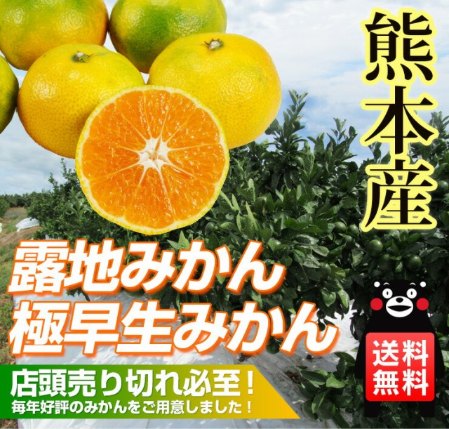 【 送料無料 】熊本産  極早生 露地 みかん 10kg ...