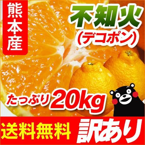【 送料無料 】 熊本産  訳あり 不知火( デコポ...