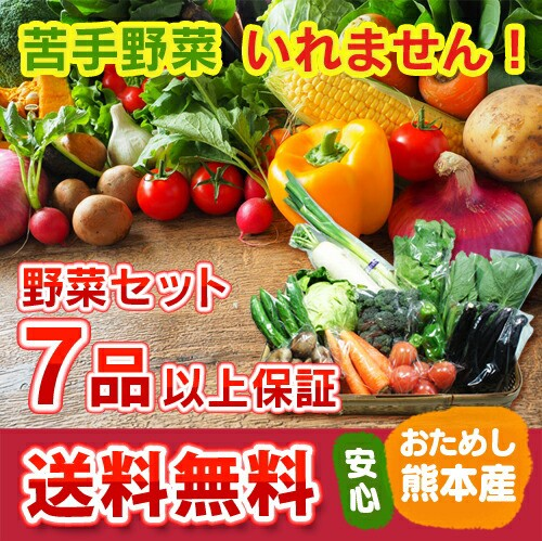 送料無料 九州 熊本産 定番野菜 7品以上保証 安...