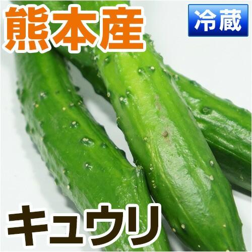 熊本県産 キュウリ 1袋(3から4本入) 【 野菜セ...