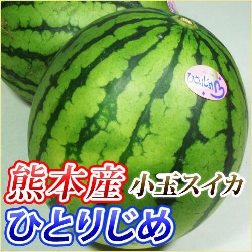 送料無料 熊本産 小玉スイカ   1箱  2〜3玉入 (...