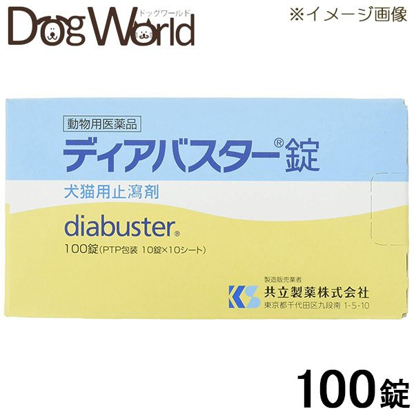 SALE 共立製薬 ディアバスター錠 100錠(10錠×10...