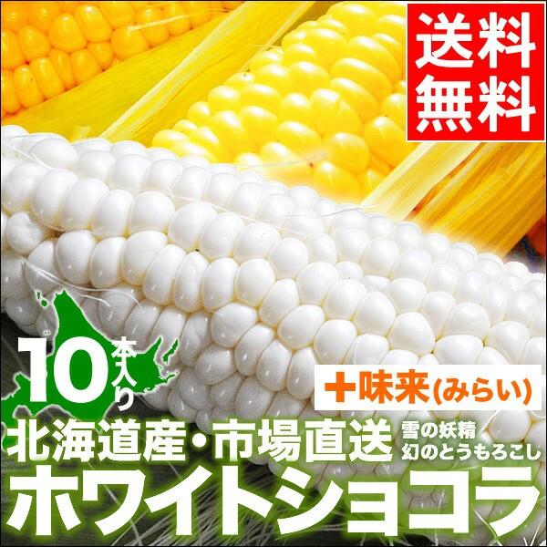 送料無料 北海道産 とうもろこし ホワイトショコ...