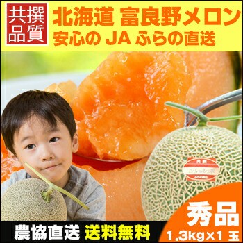 【2017年度予約受付】送料無料 北海道産 富良野メ...