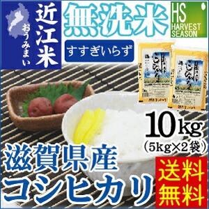 【送料無料】28年産 無洗米滋賀県産コシヒカリ10k...