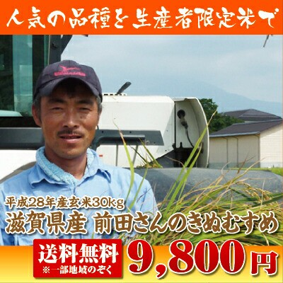 【送料無料】滋賀県前田さんのきぬむすめ玄米30kg...