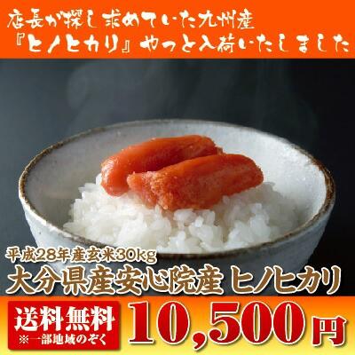 【送料無料】【28年産】大分安心院ヒノヒカリ玄米...