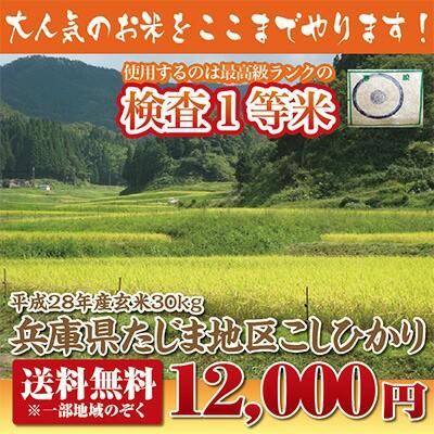 【28年産】兵庫県たじまコシヒカリ玄米30kg【送料...