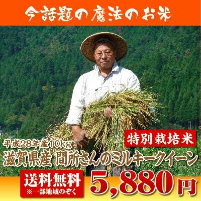 【28年産】滋賀県産間所さんのミルキークイーン10...