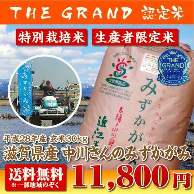 【28年産】【送料無料】滋賀県産中川さんのみずか...