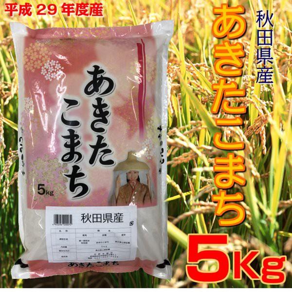 新米 29年産 秋田県産 あきたこまち 5kg あきたこ...