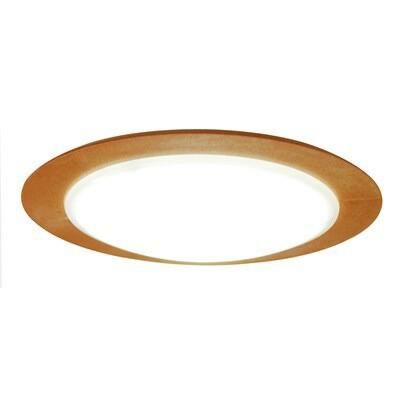 天井照明器具 薄型/樹脂製フレーム ナチュラル 小...