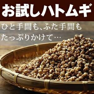 【お試し送料無料】国産はと麦茶【ハトムギ はと...