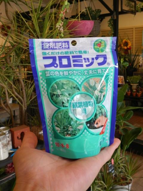 プロミック 置くだけ肥料   観葉植物専用   鉢土...