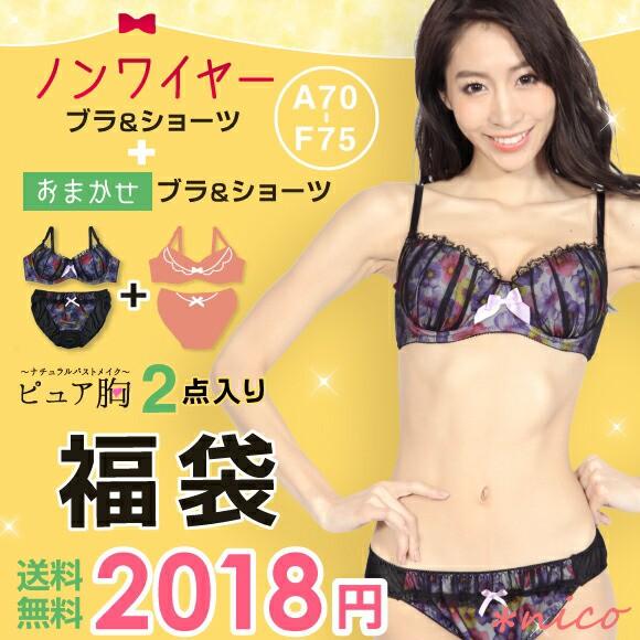 2017福袋 ノンワイヤーブラセット+ワイヤー入り...