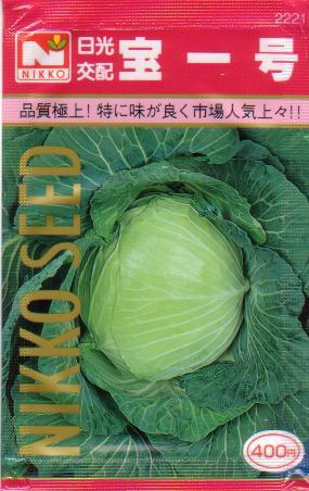 キャベツ 宝一号甘藍 約350粒 【春】【秋】 【...