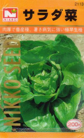 サラダ菜 【春】【秋】 【郵送対応】