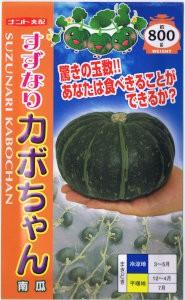 ナント種苗 かぼちゃ すずなりカボちゃん 約8粒...