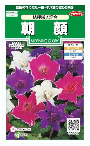 サカタのタネ 朝顔 桔梗咲き混合 1ml【郵送対...