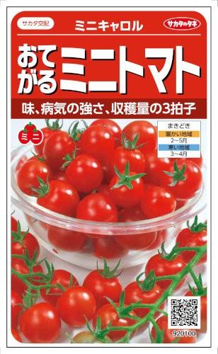 サカタのタネ トマト ミニキャロル 約14粒