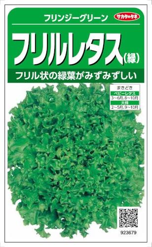 サカタのタネ レタス フリンジーグリーン 3ml