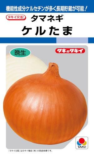 タキイ種苗 タマネギ ケルたま 5.5ml【郵送対...