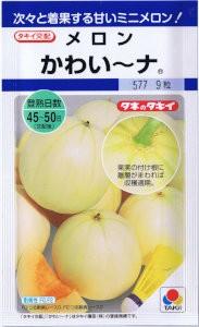 タキイ交配 メロン かわい〜ナ 約9粒 【郵送対...