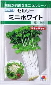 タキイ交配 セルリー ミニホワイト 1.8ml 【郵...