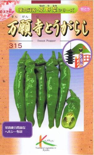 タカヤマシード 伝統野菜 万願寺とうがらし 1.3ml...