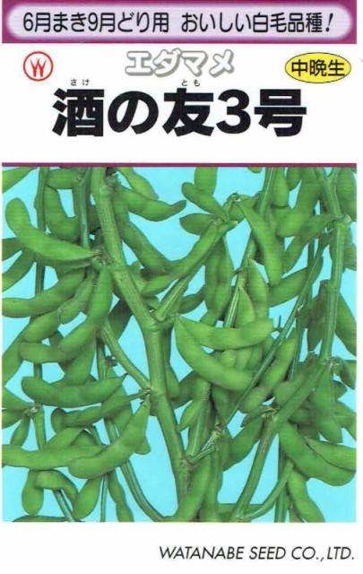 渡辺採種場 枝豆 酒の友3号 33ml 【郵送対応】