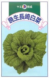 八江農芸 晩生長崎白菜 8ml