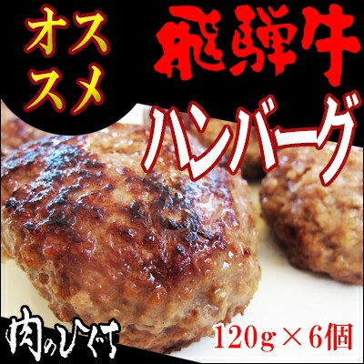 【送料無料】(冷凍)【まとめ買い!】飛騨牛ハン...