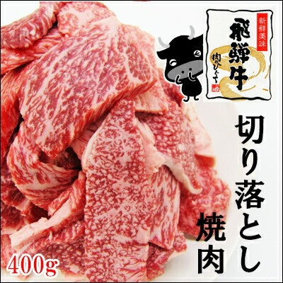 【肉のひぐち】☆焼肉登場☆(冷凍)飛騨牛切り落...