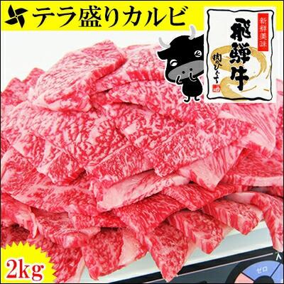 【肉のひぐち】★テラ盛り登場★【送料無料】飛騨...