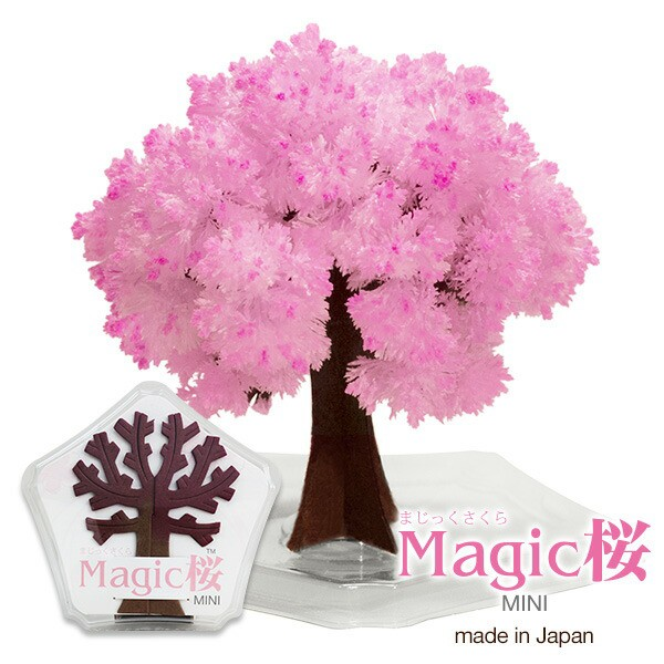 マジック桜 ミニ 10時間で桜の様にモコモコ育つMa...
