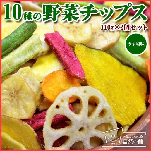 送料無料 10種の野菜 野菜チップス 110g×2 野菜スナック お菓子 スイーツ 訳あり 自然の館 かぼちゃ じゃがいも
