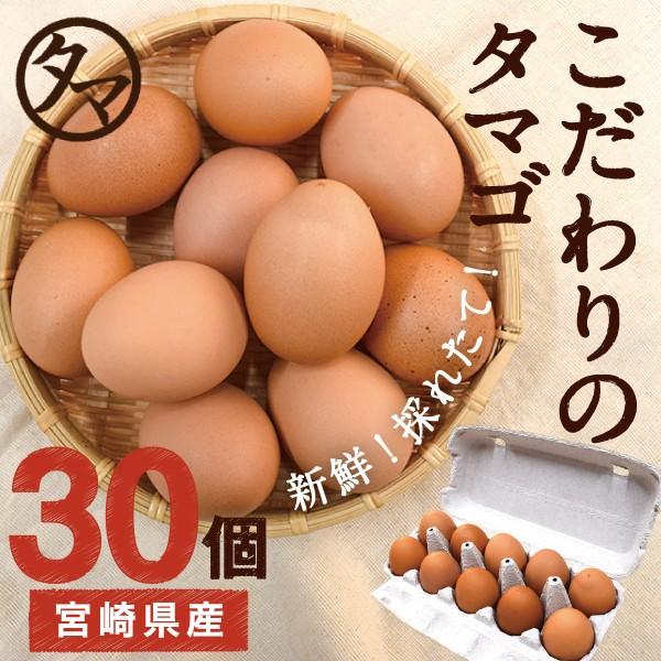 宮崎産 タマゴ 30個 新鮮 生卵 たまご マイナスイオン水 南九州産 お取り寄せ 玉子 九州 品質 衛生管理 安心 安全 高品質 送料無料