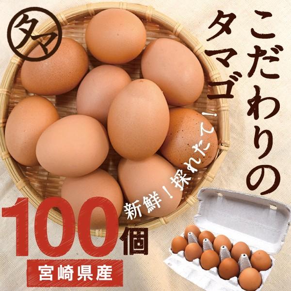 宮崎産 タマゴ 100個 新鮮 生卵 たまご マイナスイオン水 南九州産 お取り寄せ 玉子 九州 品質 衛生管理 安心 安全 高品質 送料無料