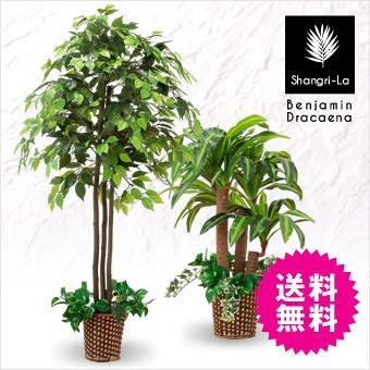 観葉植物 造花 光触媒 木 ベンジャミン 幸福の木 2本セット インテリアグリーン 人工観葉植物 Shangri-La/シャングリラ