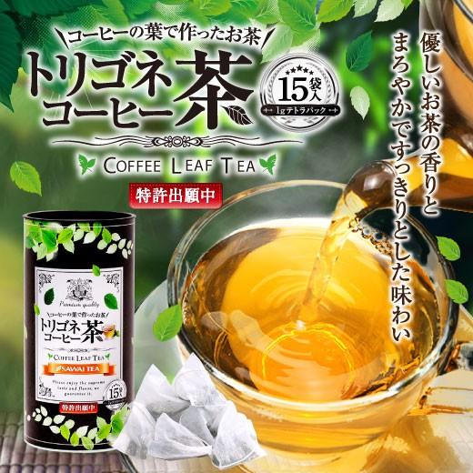 【澤井珈琲】コーヒーの葉で作ったお茶 トリゴネコーヒー茶 15袋(ティーバッグ)