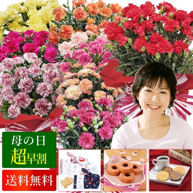 早割 母の日 花とセット 送料無料 色が選べるカーネーションの鉢植えと選べるお菓子セット ギフト