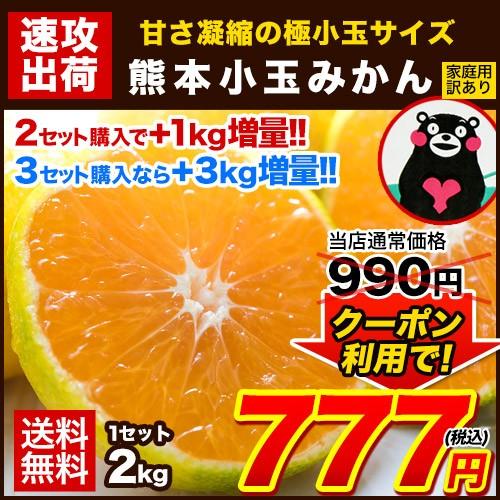 みかん 小玉 2kg 訳あり 熊本 送料無料 日本最速級 3s~s 2s ss sサイズ 小粒 みかん小粒 温州 家庭用 1-5