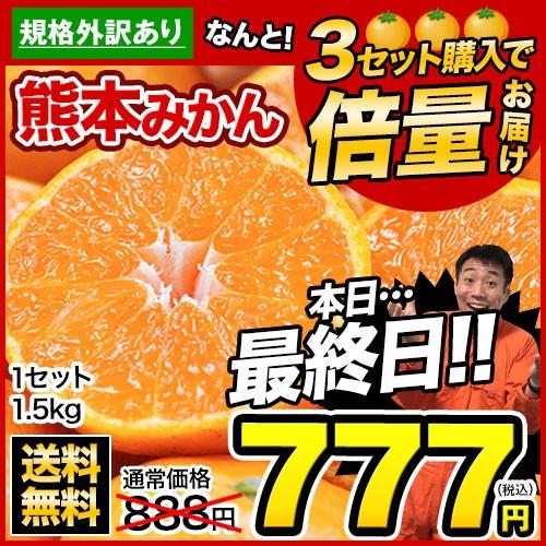【本日最終日】■3セット購入で倍量届く■みかん1.5kg熊本産 規格外 3-10営業日以内に出荷予定(土日祝除く) 複数購入は1