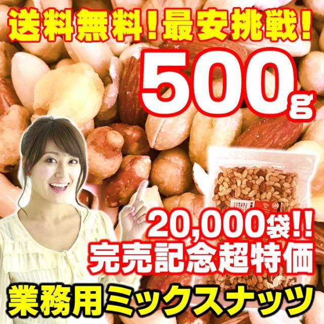ミックスナッツ 500g 厳選7種ブレンド 旨塩仕上げ 素焼き 送料無料 アーモンド クルミ カシューナッツ 業務用 お試し 特