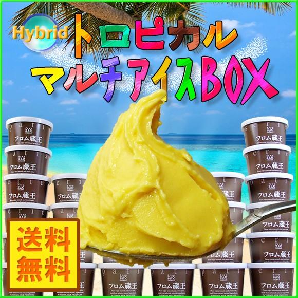 フロム蔵王 Hybrid★★トロピカルマルチアイスBOX24/送料無料/ギフト/詰め合わせ/お中元/沖縄・離島は送料加算