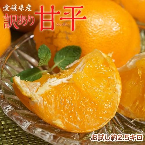 柑橘 愛媛県産 訳あり 甘平 スレ・傷有・サイズ不揃い 約2.5キロ 送料無料