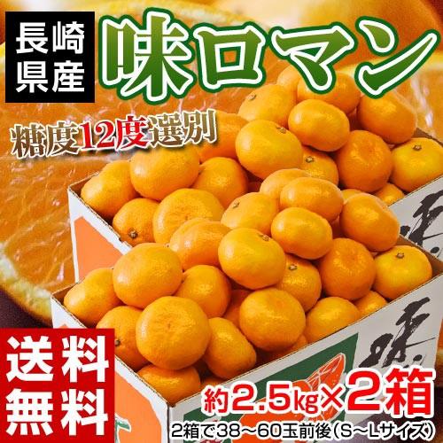 みかん 送料無料 長崎県産みかん 味ロマン 約2.5kg (S〜L)×2箱 【糖度12度選別】