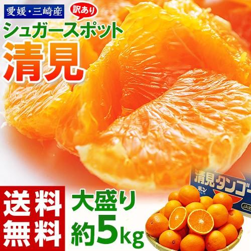 柑橘 愛媛県 三崎産 訳あり シュガースポット 清見 オレンジ M〜4L 約5キロ 送料無料