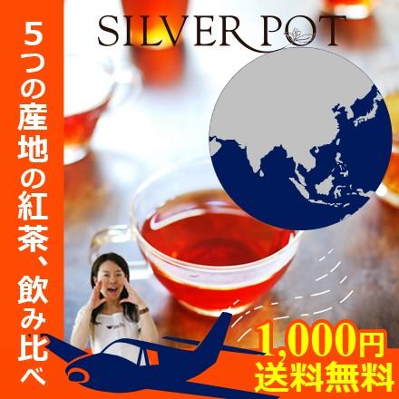 【送料無料お試し】グルメ大賞受賞店がお送りするティーバッグ福袋「紅茶で世界旅行セット」
